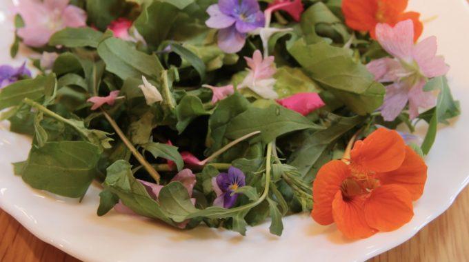 オホバン野菜